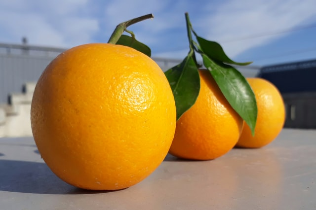 your_baby_is_the_size_of_an_orange_at_15_weeks